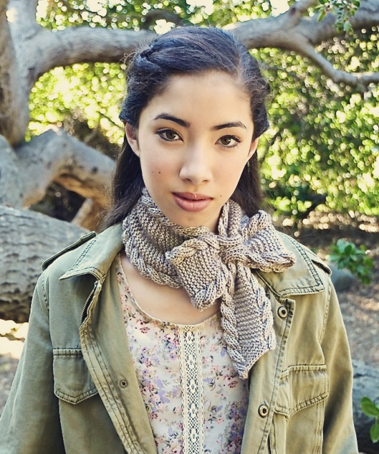 Bow Tie Ascot By Pam Powers Project Knitting Scarves Shawls