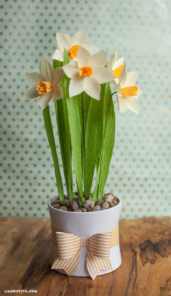 Crepe Paper Daffodils Tutorial By Lia Griffith