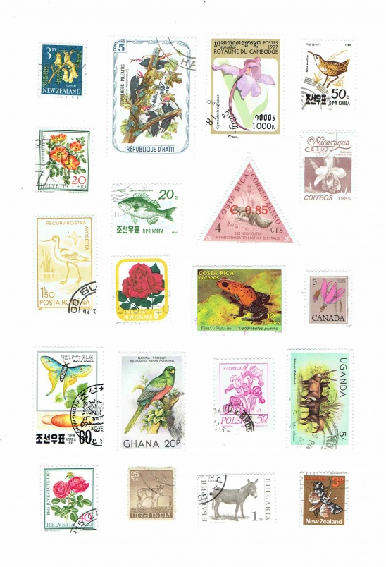 image relating to Stamps Printable identify Printable Basic Bouquets And Pets Earth Postage Stamps
