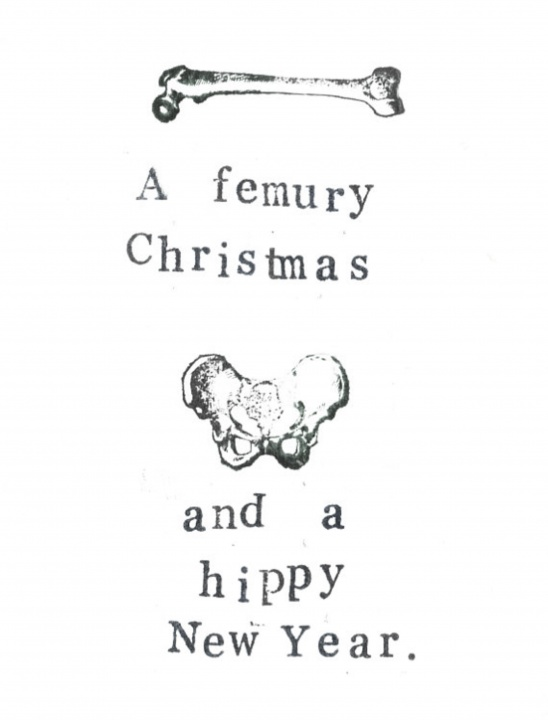 A Femury Christmas And Hippy New Year Anatomy Card by Blue Specs ...
