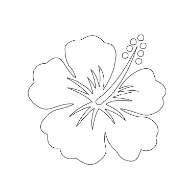 im making the scout tee to wear for the jimmy buffett concert next weekend i plan to embroider on a simple hibiscus flower