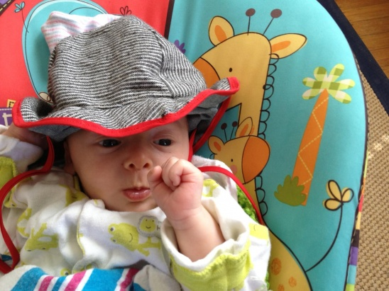 I came across a simple baby sun hat pattern while looking through the Purl  Bee s website and decided to make one for Sylas f7536052692