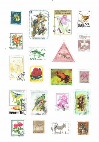 image regarding Stamp Printable identify Printable Common Bouquets And Pets Entire world Postage Stamps